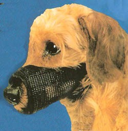Best Fit Mesh Dog Muzzle Size 2
