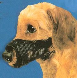 Best Fit Mesh Dog Muzzle Size 2