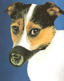 Best Fit Mesh Dog Muzzle Size 3